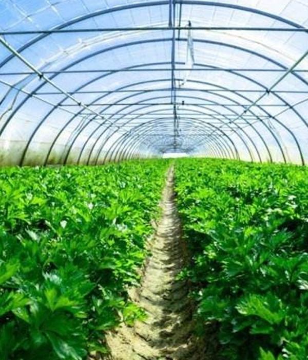 农业应用取暖